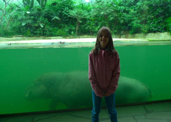 hippo-underwater