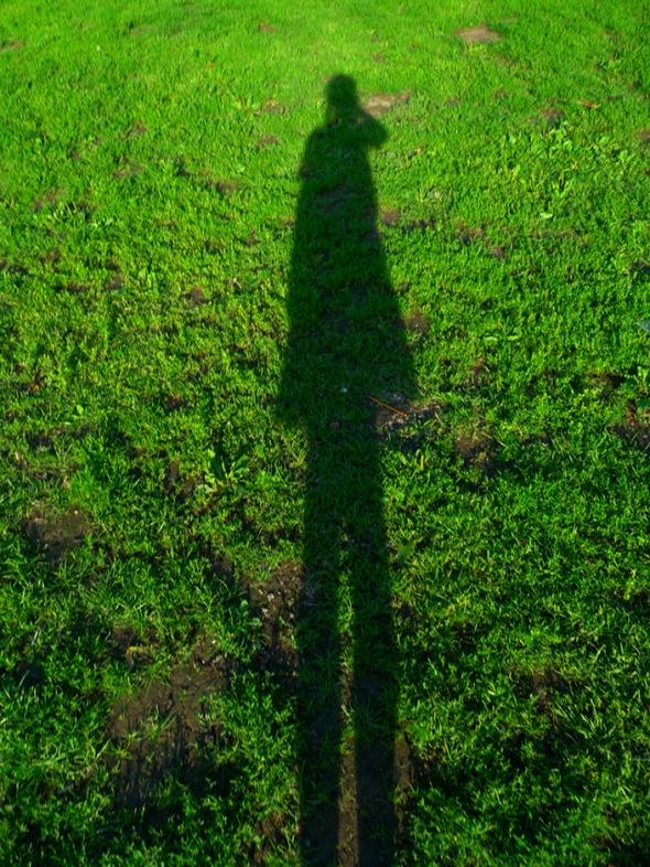 Z's shadow