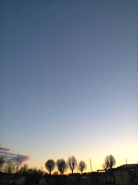 Photo0108